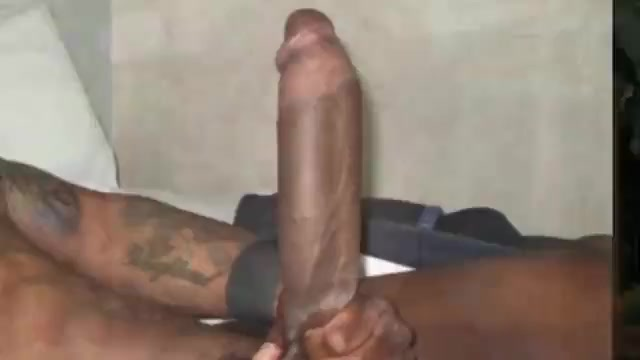 White sluts become crazy when see black cocks!